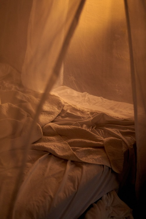Moustiquaire débarrasser moustique
